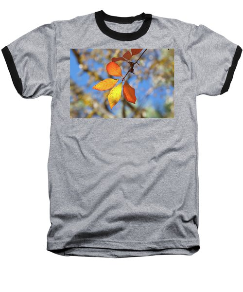Baseball T-Shirt featuring the photograph It's Time To Change by Linda Unger