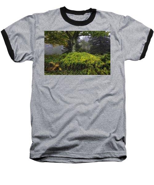 Ivy Garden Baseball T-Shirt