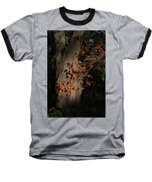 Ivy In The Fall Baseball T-Shirt