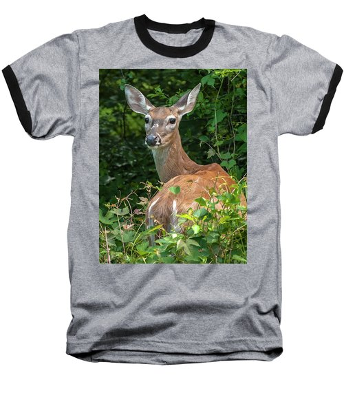 Ivy League Doe Baseball T-Shirt