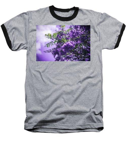 Baseball T-Shirt featuring the photograph Jacaranda Mimosifolia Kula Maui Hawaii by Sharon Mau