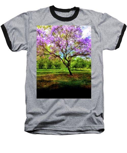 Jacaranda Tree Baseball T-Shirt by Joseph Hollingsworth