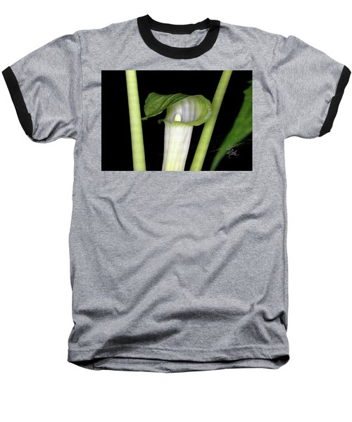 Jack In The Pulpit Baseball T-Shirt by Meta Gatschenberger