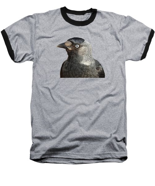 Jackdaw Corvus Monedula Bird Portrait Vector Baseball T-Shirt by Tracey Harrington-Simpson