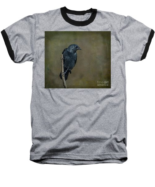 Jackdaw Baseball T-Shirt