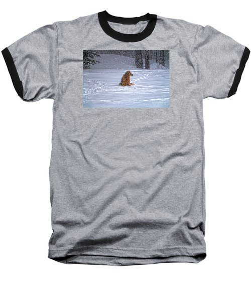 January Blizzard Baseball T-Shirt by Elizabeth Dow