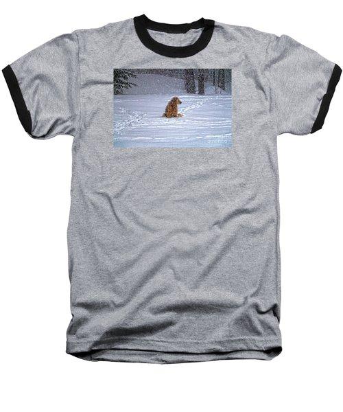 January Blizzard Baseball T-Shirt