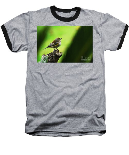 Baseball T-Shirt featuring the photograph January Migration by Debby Pueschel