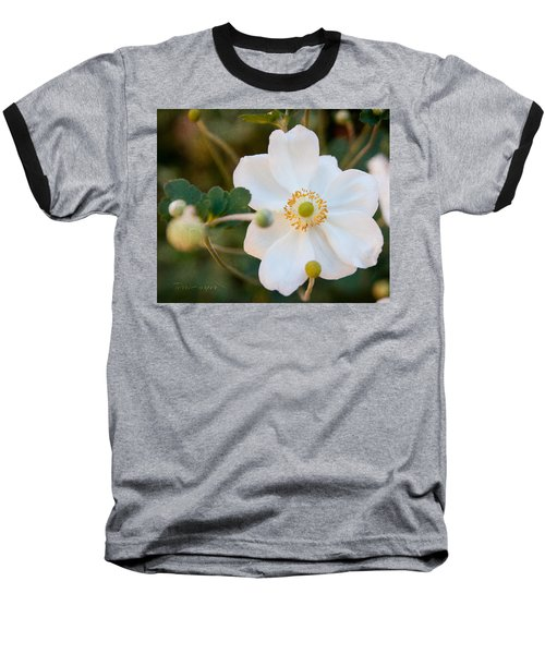 Japanese Anemone Baseball T-Shirt