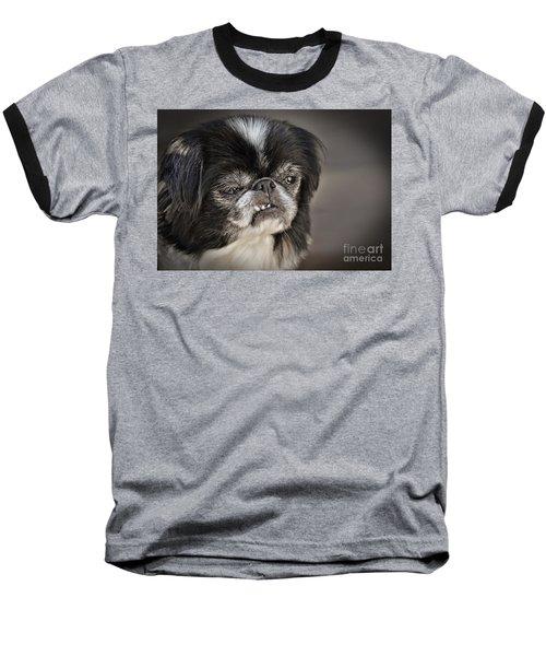 Japanese Chin Doggie Portrait Baseball T-Shirt by Jim Fitzpatrick