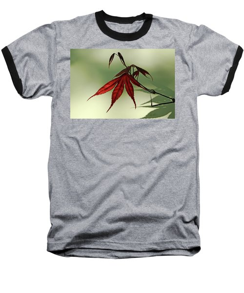 Baseball T-Shirt featuring the photograph Japanese Maple Leaf by Ann Lauwers