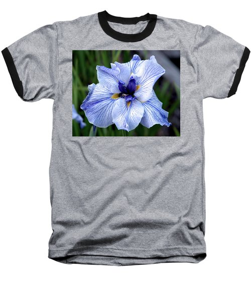 Japanese Water Iris In Blue 2695 H_3 Baseball T-Shirt