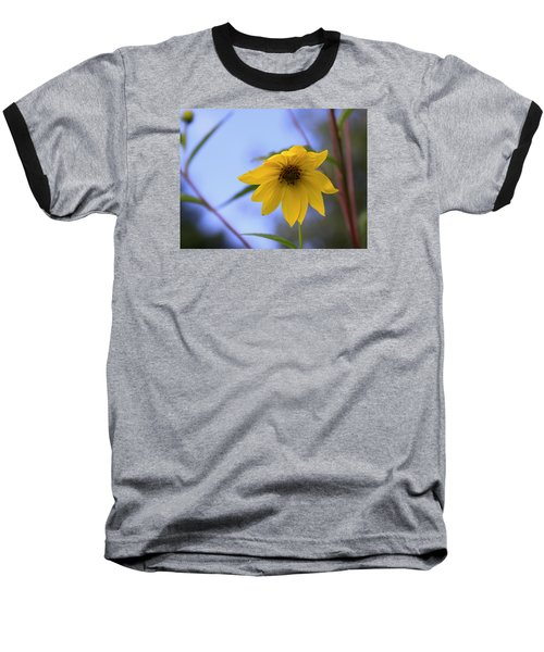Jerusalem Artichoke And Blue Sky Baseball T-Shirt
