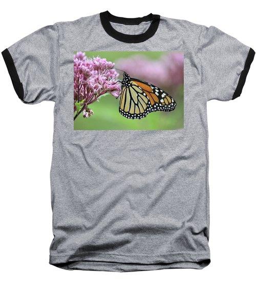 Joe-pye And The Wanderer Baseball T-Shirt