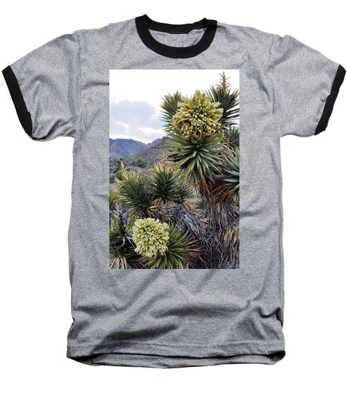 Joshua Tree Bloom Rainbow Mountain Baseball T-Shirt