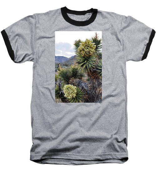 Joshua Tree Bloom Rainbow Mountain Baseball T-Shirt