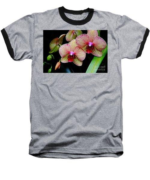 Joy Within Baseball T-Shirt