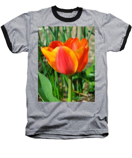 Joyful Tulip Baseball T-Shirt
