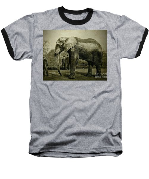 Jumbo The Elepant Circa 1890 Baseball T-Shirt by Peter Gumaer Ogden
