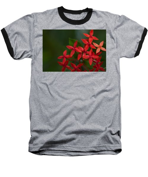 Jungle Geranium Baseball T-Shirt