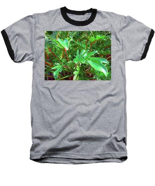 Jungle Greenery Baseball T-Shirt by Ginny Schmidt