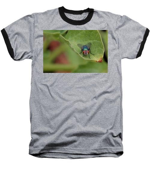 Just A Fly Baseball T-Shirt by Scott Holmes