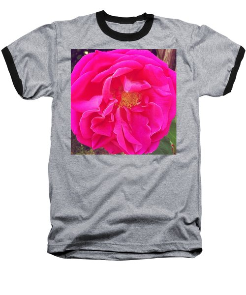Just A Rose...#floral #flowers #pink Baseball T-Shirt