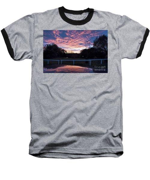 Just Had To Stop Baseball T-Shirt by David  Hollingworth