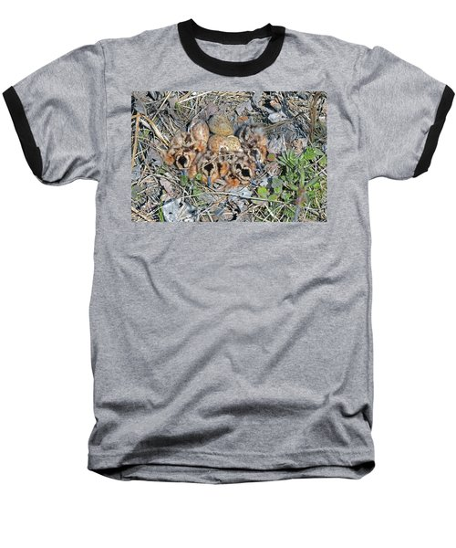 Just Hatched American Woodcock Chicks Baseball T-Shirt by Asbed Iskedjian