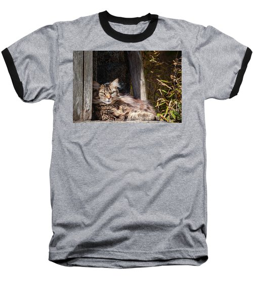 Just Lazing Around Baseball T-Shirt