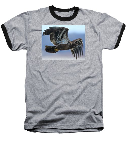 Baseball T-Shirt featuring the photograph Juvenile Bald Eagle by Coby Cooper