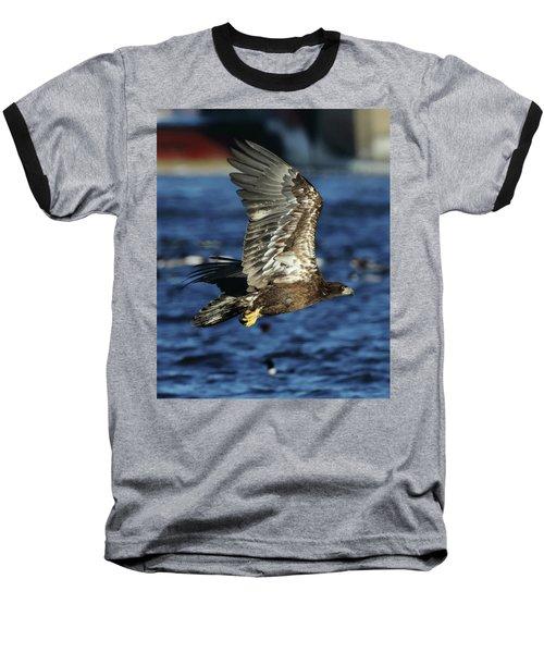 Juvenile Bald Eagle Over Water Baseball T-Shirt