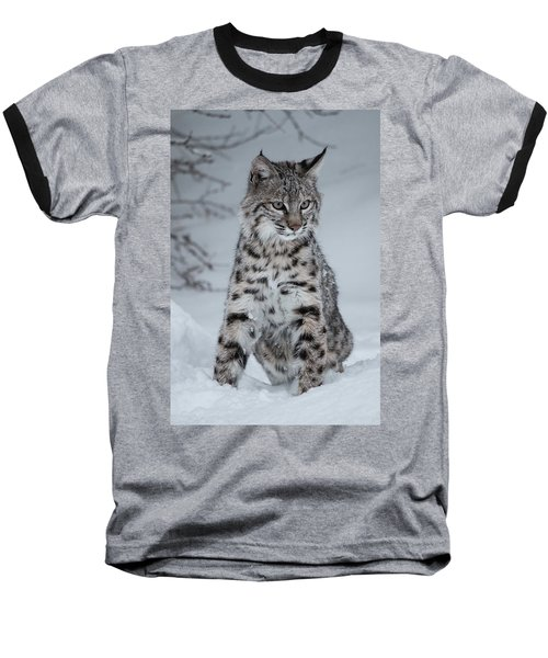 Juvenile Bobcat In The Snow Baseball T-Shirt