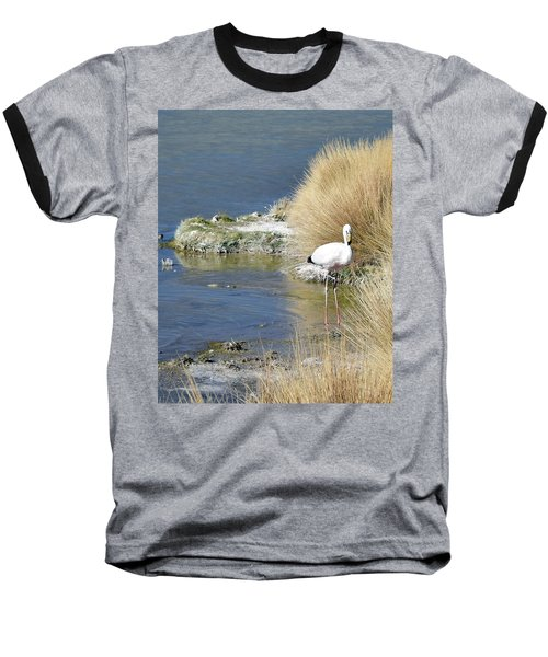 Juvenile Flamingo No. 64 Baseball T-Shirt by Sandy Taylor
