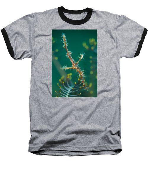 Juvenile Ornate Ghost Pipefish Baseball T-Shirt