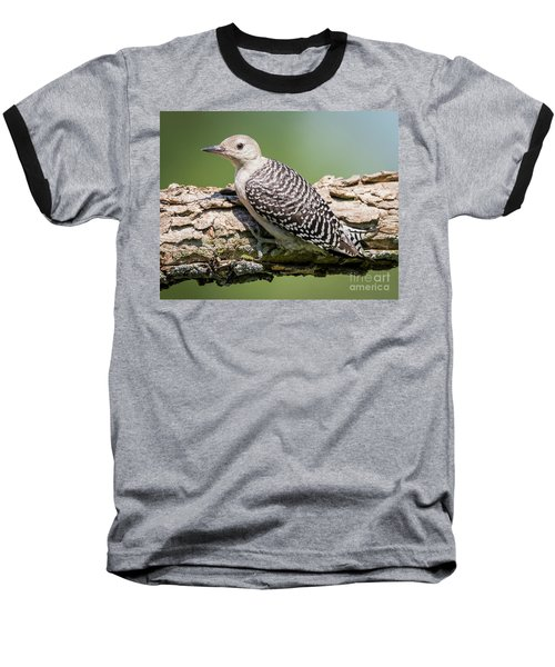 Juvenile Red-bellied Woodpecker Baseball T-Shirt