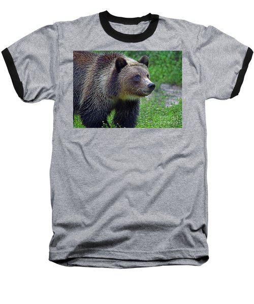 Juvie Grizzly Baseball T-Shirt by Larry Nieland