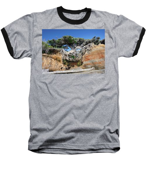 Kalaloch Tree Of Life Baseball T-Shirt