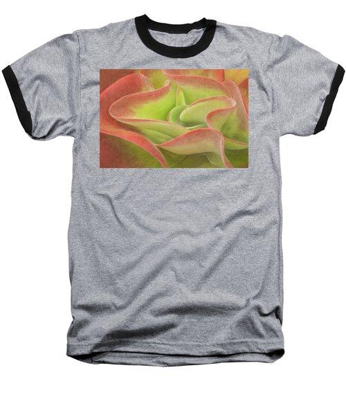 Kalanchoe Lucia The Beautiful Baseball T-Shirt