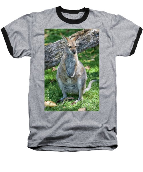 Baseball T-Shirt featuring the photograph Kangaroo by Patricia Hofmeester