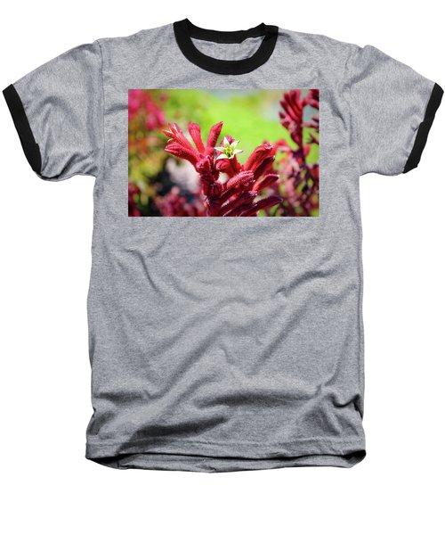 Kangaroo Paws Baseball T-Shirt