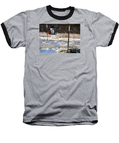 Baseball T-Shirt featuring the photograph Kansas Cardinal At The Feeder by Mark McReynolds