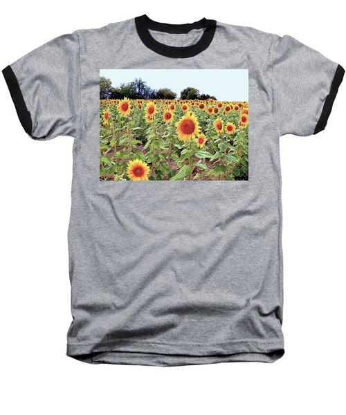 Kansas Sunflower Field Baseball T-Shirt