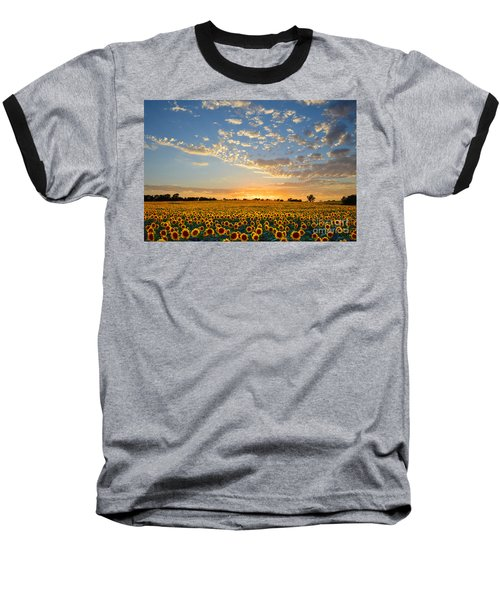 Kansas Sunflowers At Sunset Baseball T-Shirt