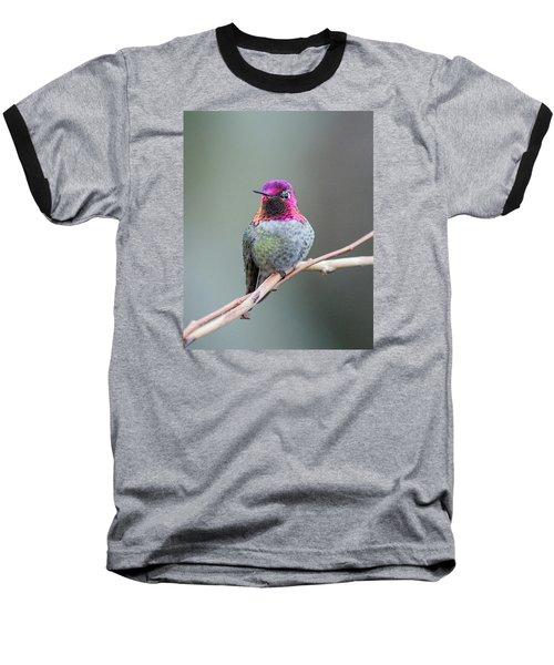Karisa's Hummingbird.1 Baseball T-Shirt by E Faithe Lester