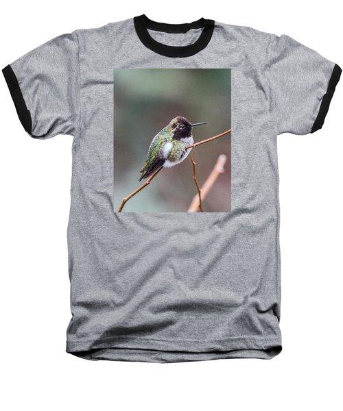 Karisa's Hummingbird.2 Baseball T-Shirt by E Faithe Lester