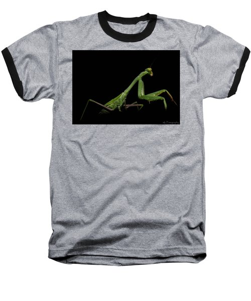 Katydid In Black Baseball T-Shirt