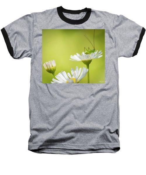 Katydid Baseball T-Shirt