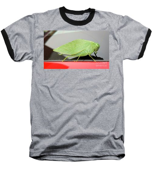 Katydids- Bush Crickets Baseball T-Shirt