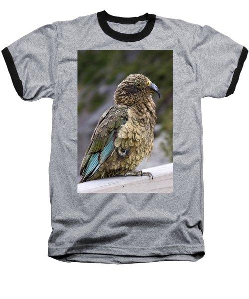Baseball T-Shirt featuring the photograph Kea Bird by Sally Weigand